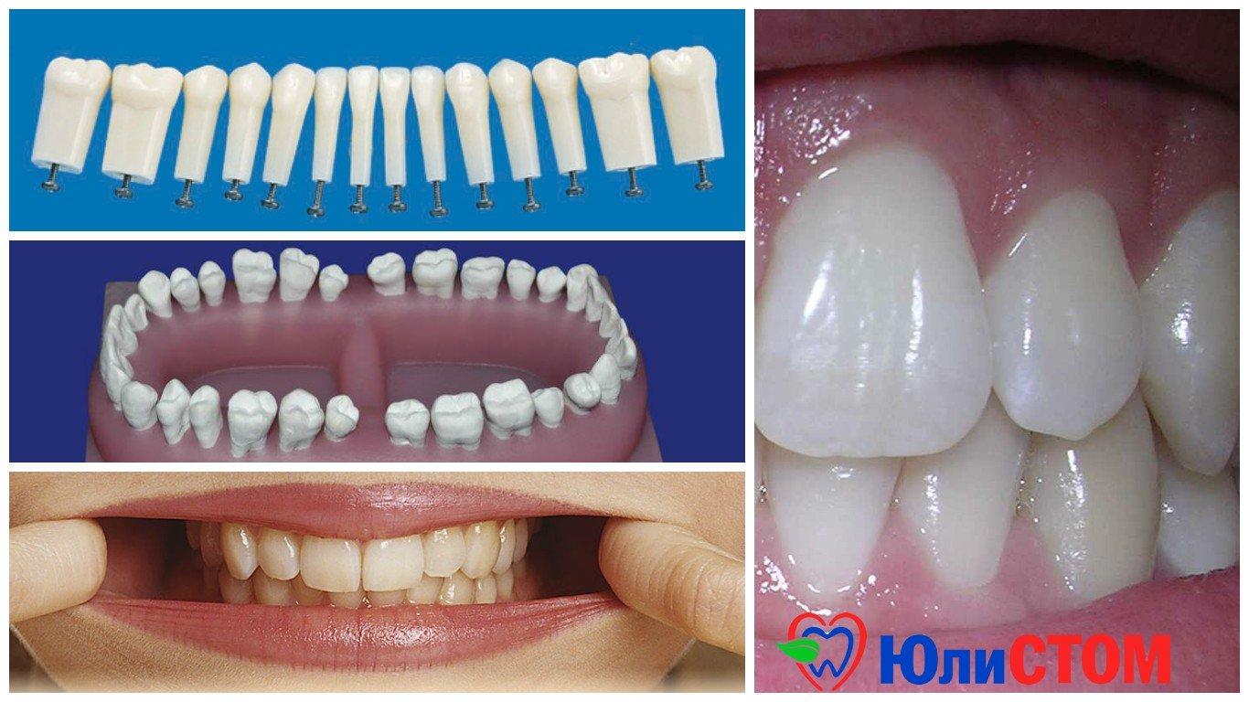 Сколько зубов во рту человека?