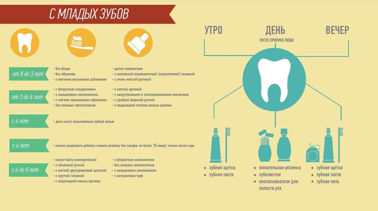 Правильно чистить зубы: инфографика
