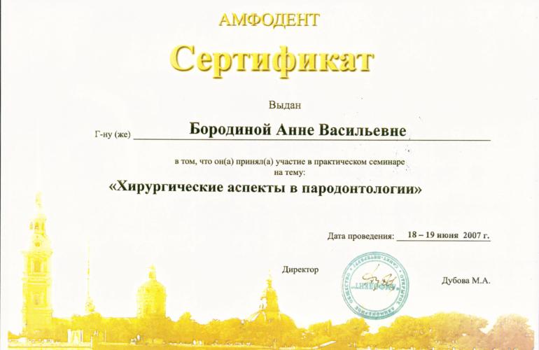 Borodina3